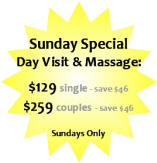 Palm Springs Clothing Optional Spa Massage Specials